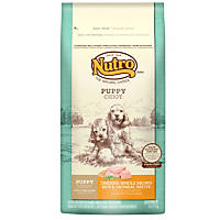 Nutro Chicken, Whole Brown Rice & Oatmeal Puppy Food
