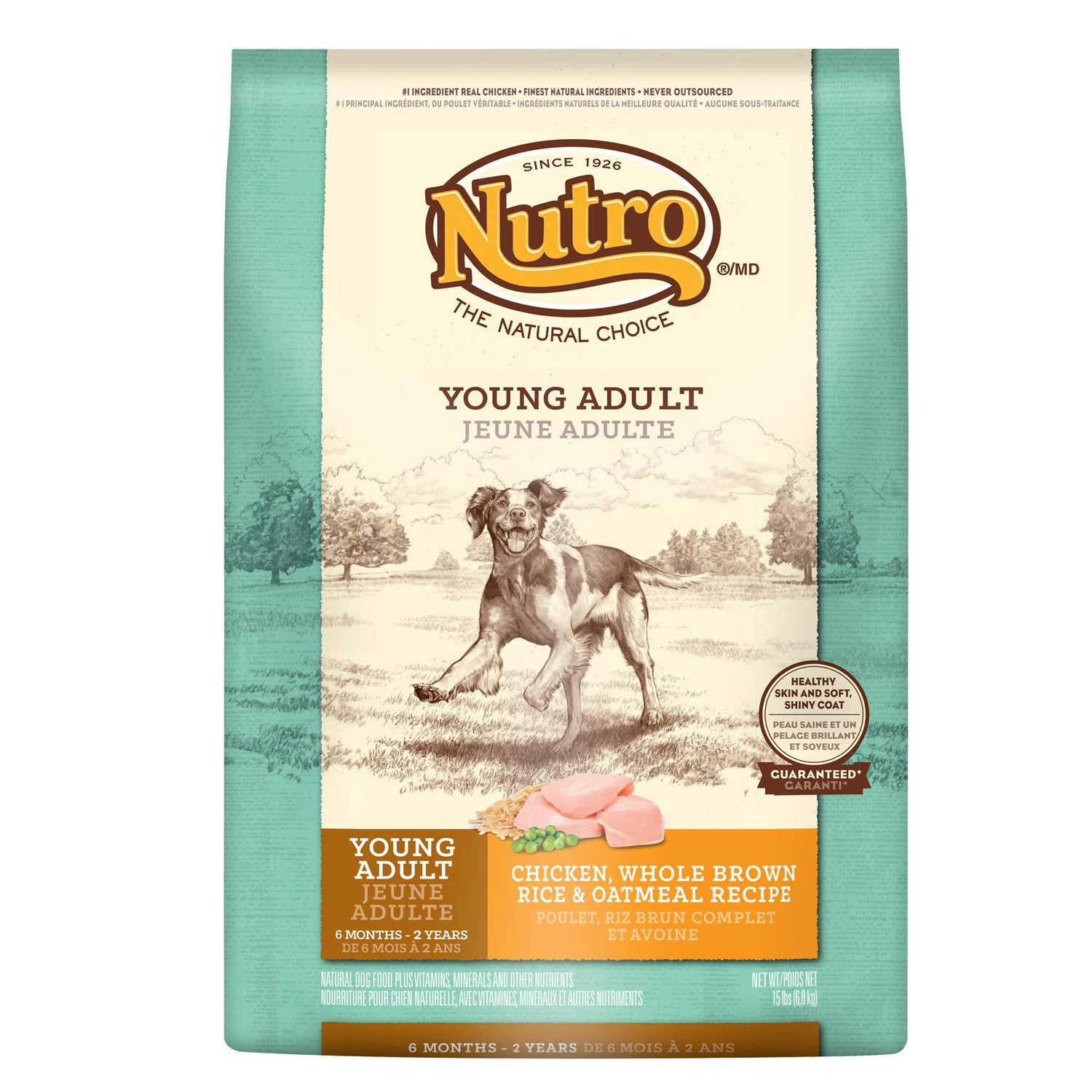 Nutro Natural Choice Chicken, Whole Brown Rice & Oatmeal Young Adult Dog Food