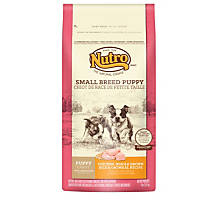 Nutro Chicken, Whole Brown Rice & Oatmeal Small Breed Puppy Food