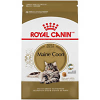 Royal Canin Feline Breed Nutrition Maine Coon Adult Cat Food