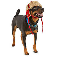 Good2Go Red Trapper Dog Hat