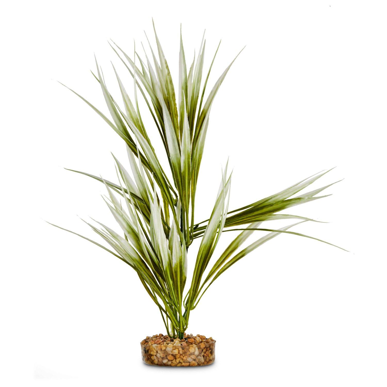 Imagitarium Sword Plant Green Potted