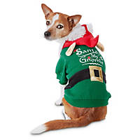 Petco Holiday Gnome Dog Hoodie