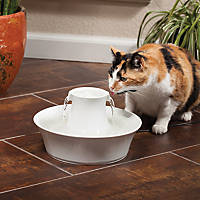 PetSafe Drinkwell White Porcelain Avalon Fountain