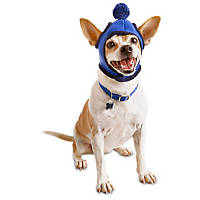 Pup Crew Blue Pom Wrap Dog Hat