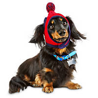 Pup Crew Red Pom Wrap Dog Hat