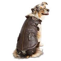 Wag-a-tude Leather Dog Bomber Jacket