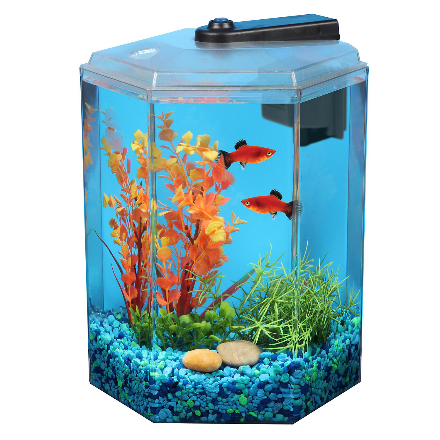 Fish aquariums kits for Petco fish tank filters