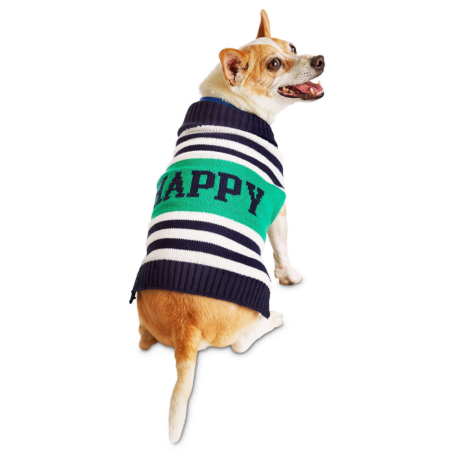 Pup Crew Striped Happy Dog Sweater, Large