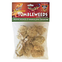 T-Rex Terra Accents Tumbleweeds