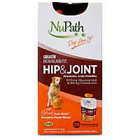 NuPath Hip & Joint Pumpkin Puree Dog Supplement