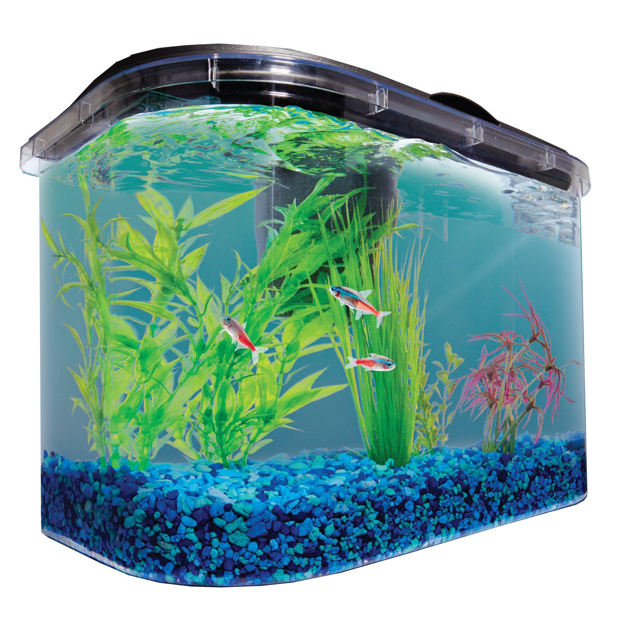 Imagitarium freshwater aquarium petco for 4 gallon fish tank