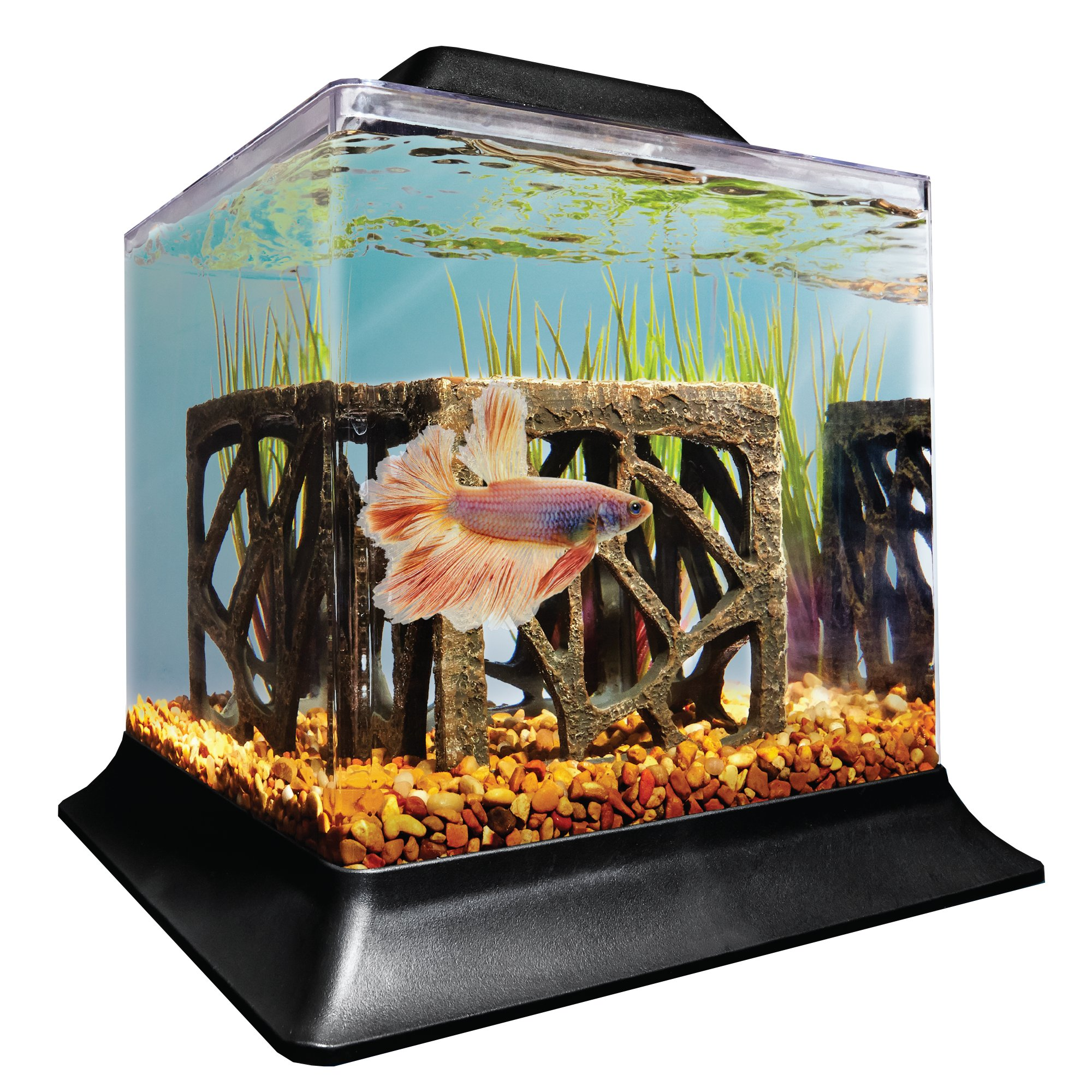 Imagitarium betta aquarium petco store for Betta fish tanks petco