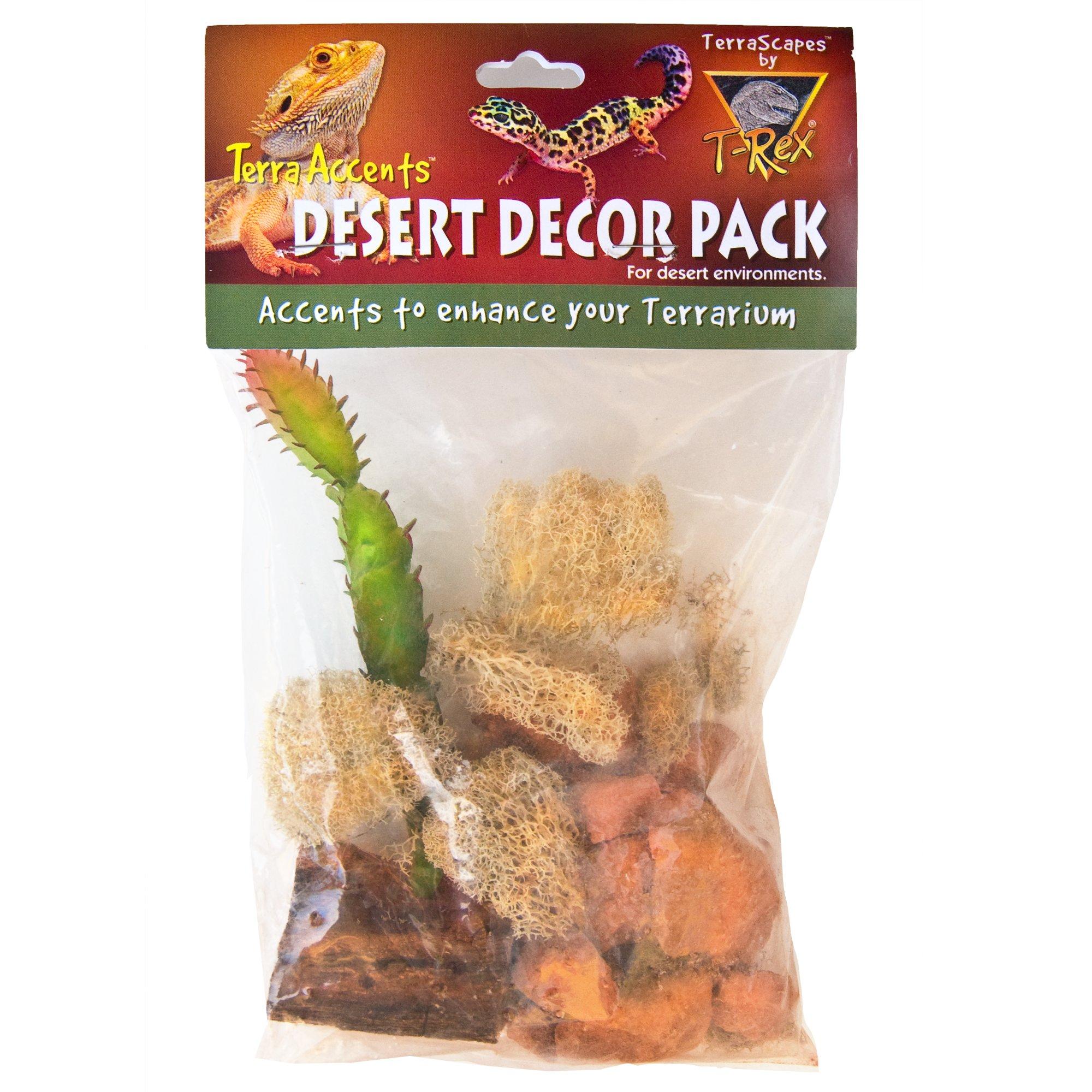T-Rex Terra Accents Desert Decor Pack