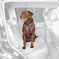 Kurgo Gray & Red Journey Dog Harness