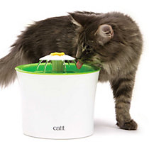 cat waterers, fountains and accessories