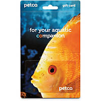 Petco Gift Card For Aquatics Lovers