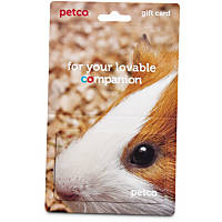 Petco Gift Card For Small Animal Lovers