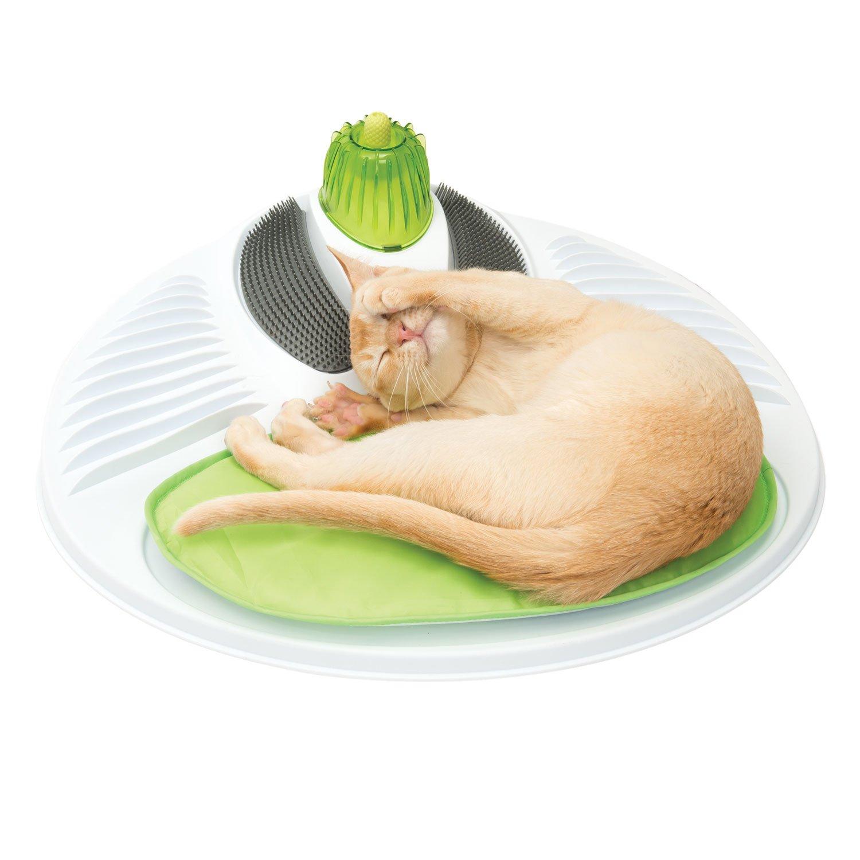 breeze tidy cat