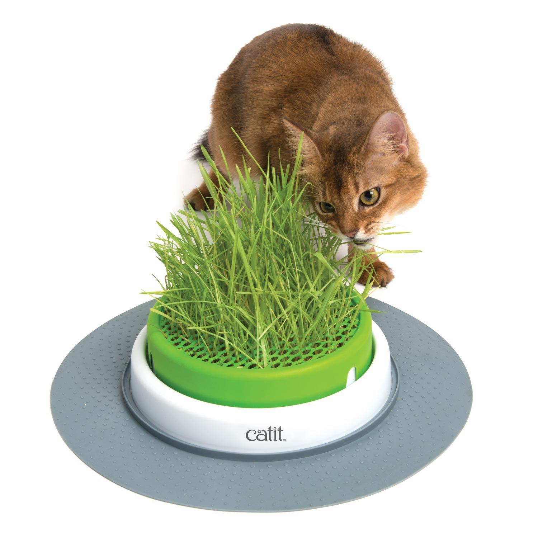 Catit Senses 2.0 Grass Planter Cat Toy