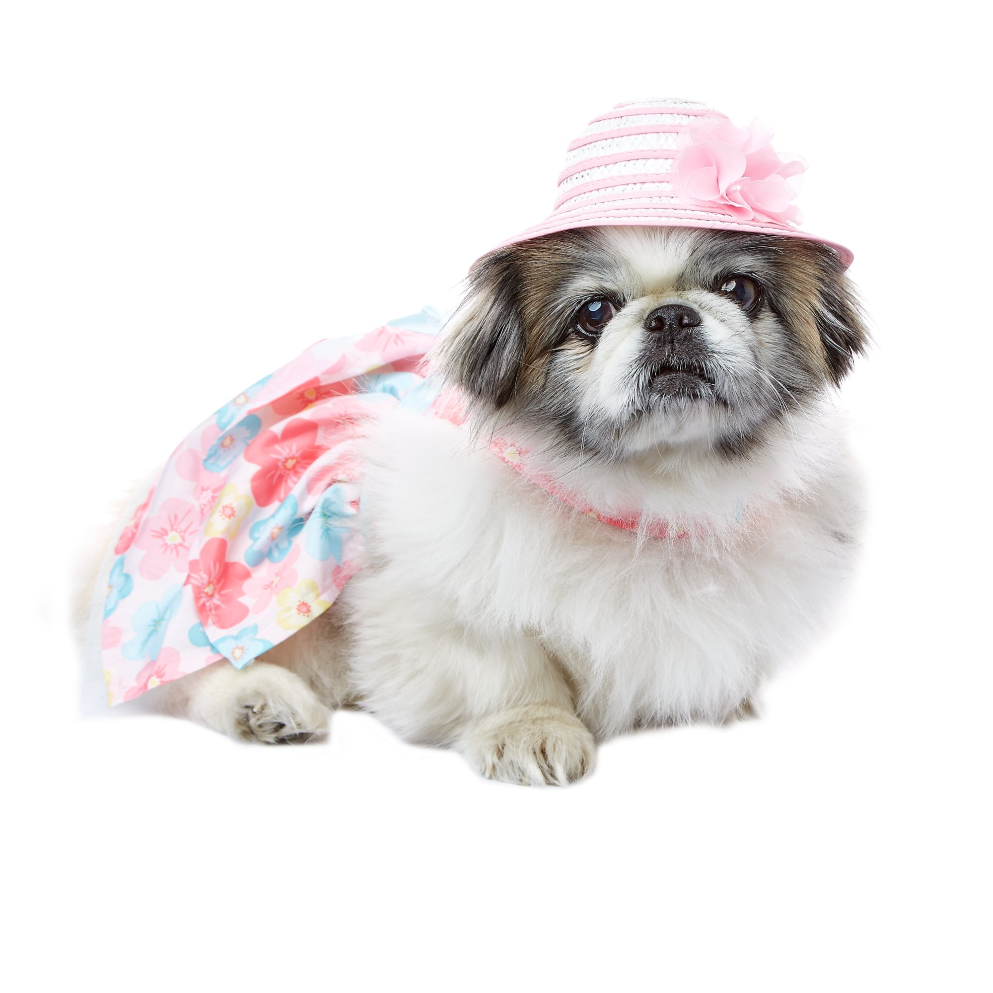 Smoochie Pooch Pink and White Band Sun Hat Medium/Large