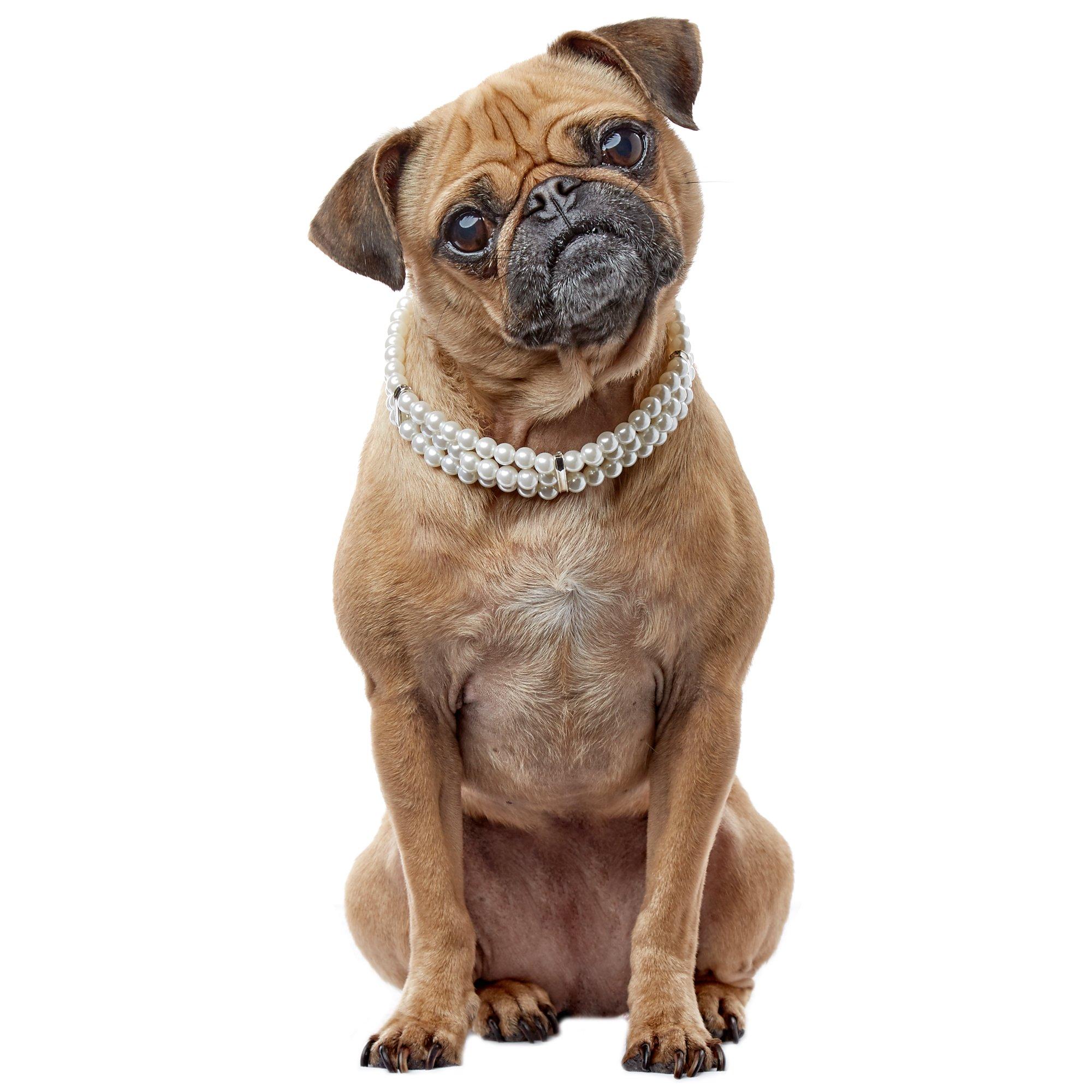 Smoochie Pooch Triple Strand Pearl Necklace