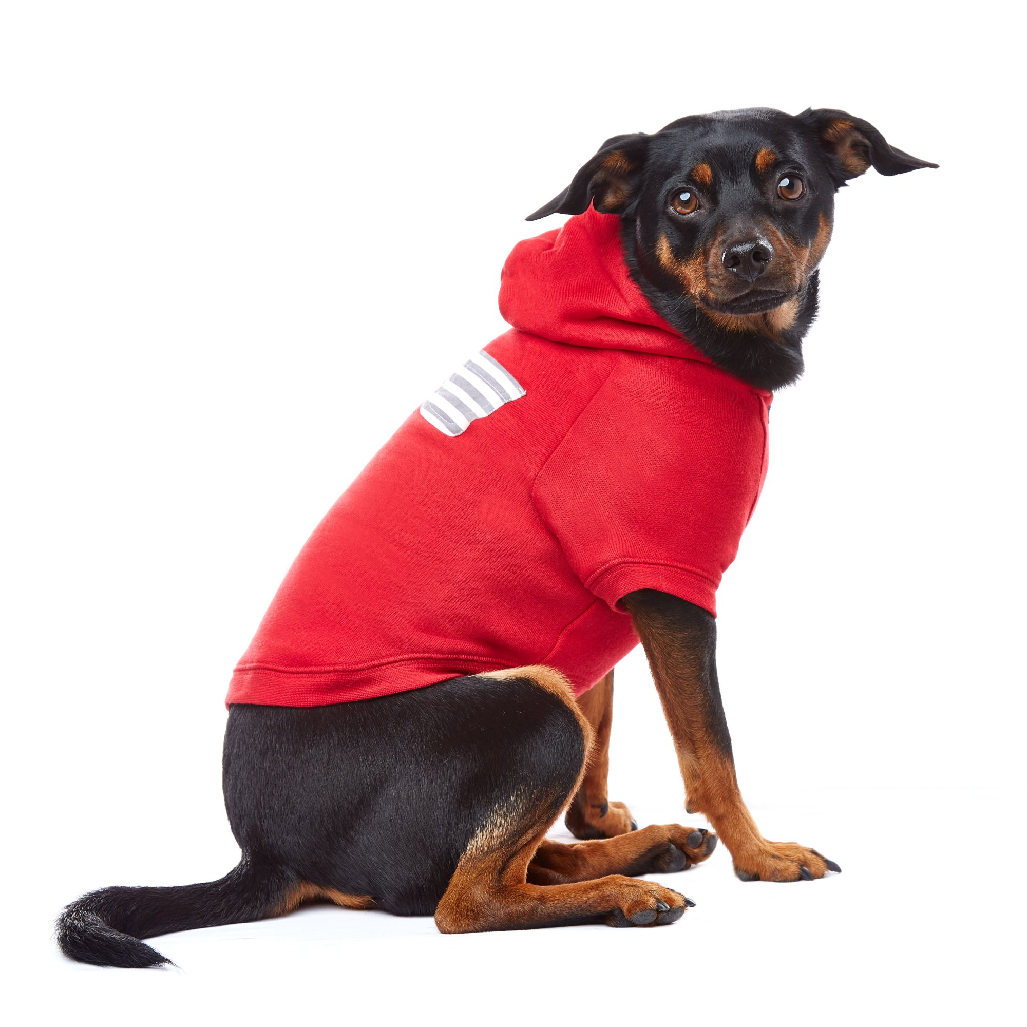 PupCrew Red Raglan with Grey Striped Pocket Hoodie