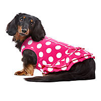 PupCrew Pink and White Button Tie Dress