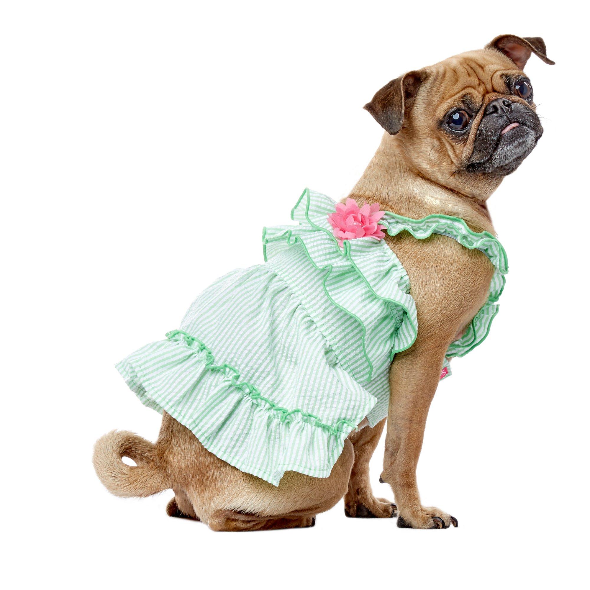Smoochie Pooch Green Seersucker Ruffle Flower Print Dress