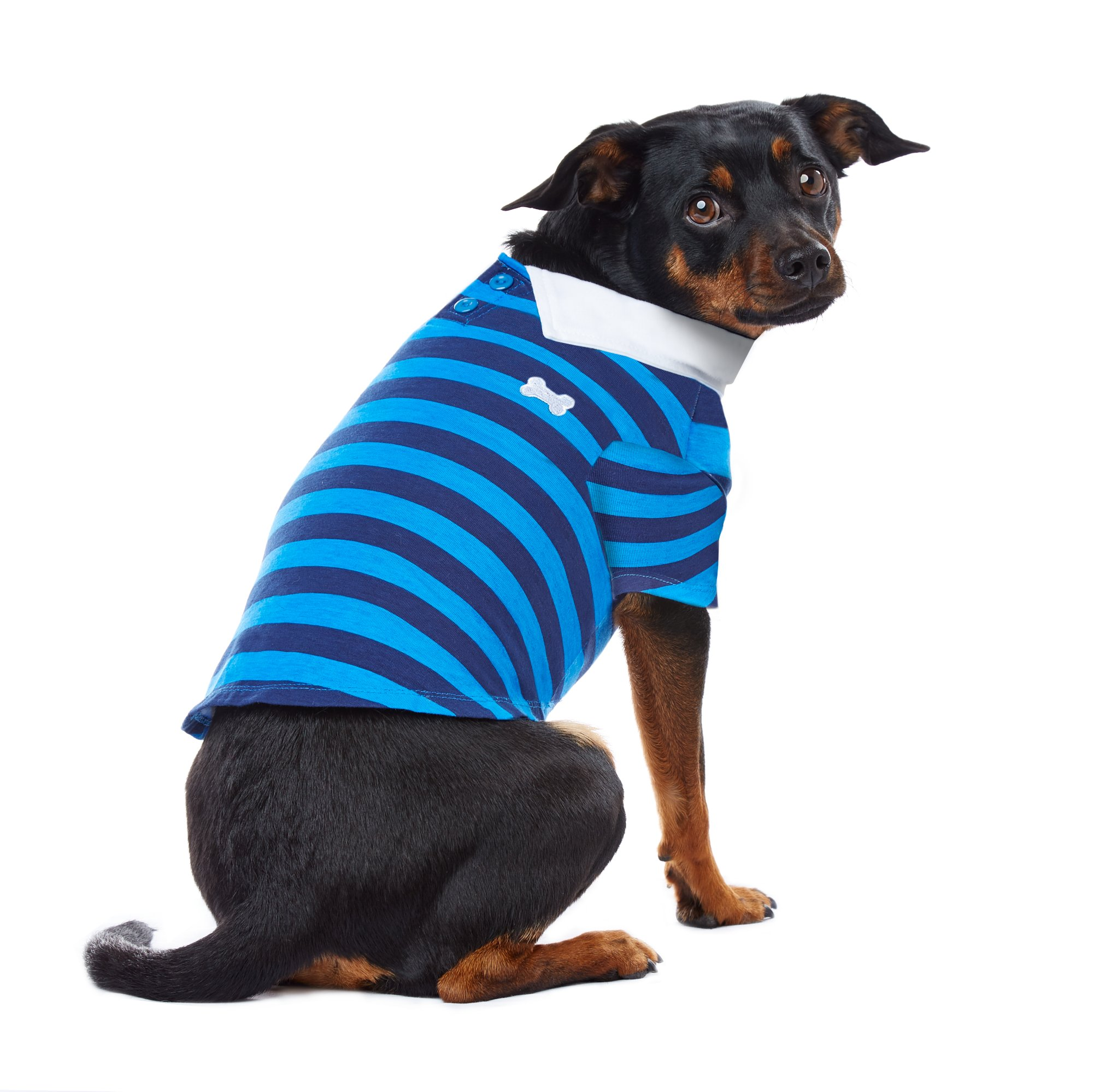 PupCrew Navy and Blue Stripe Button Collar T Shirt