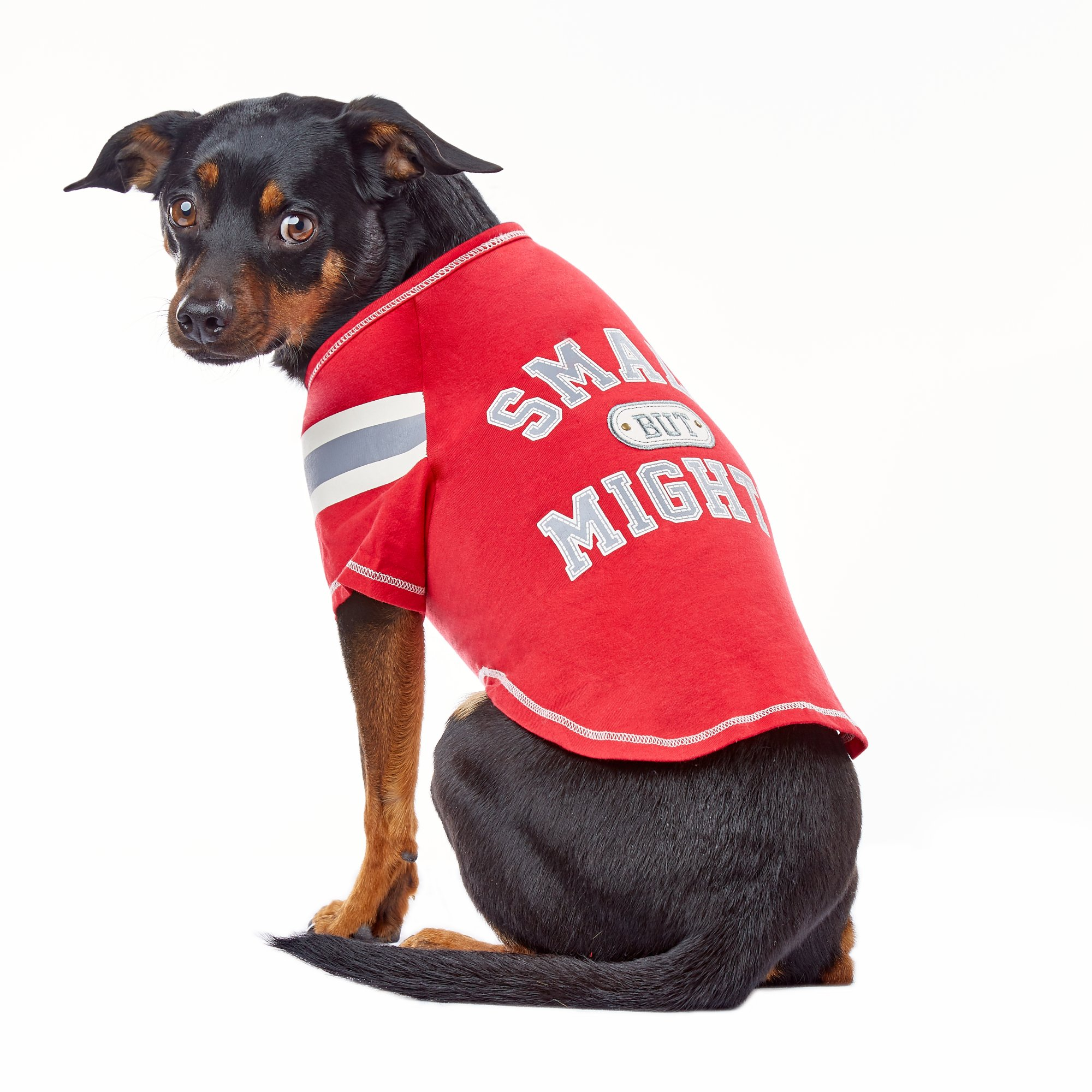 Wag-A-Tude Red Small But Mighty Raglan T Shirt