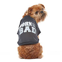 Wag-A-Tude Black Born to be Bad Raw Raglan T Shirt