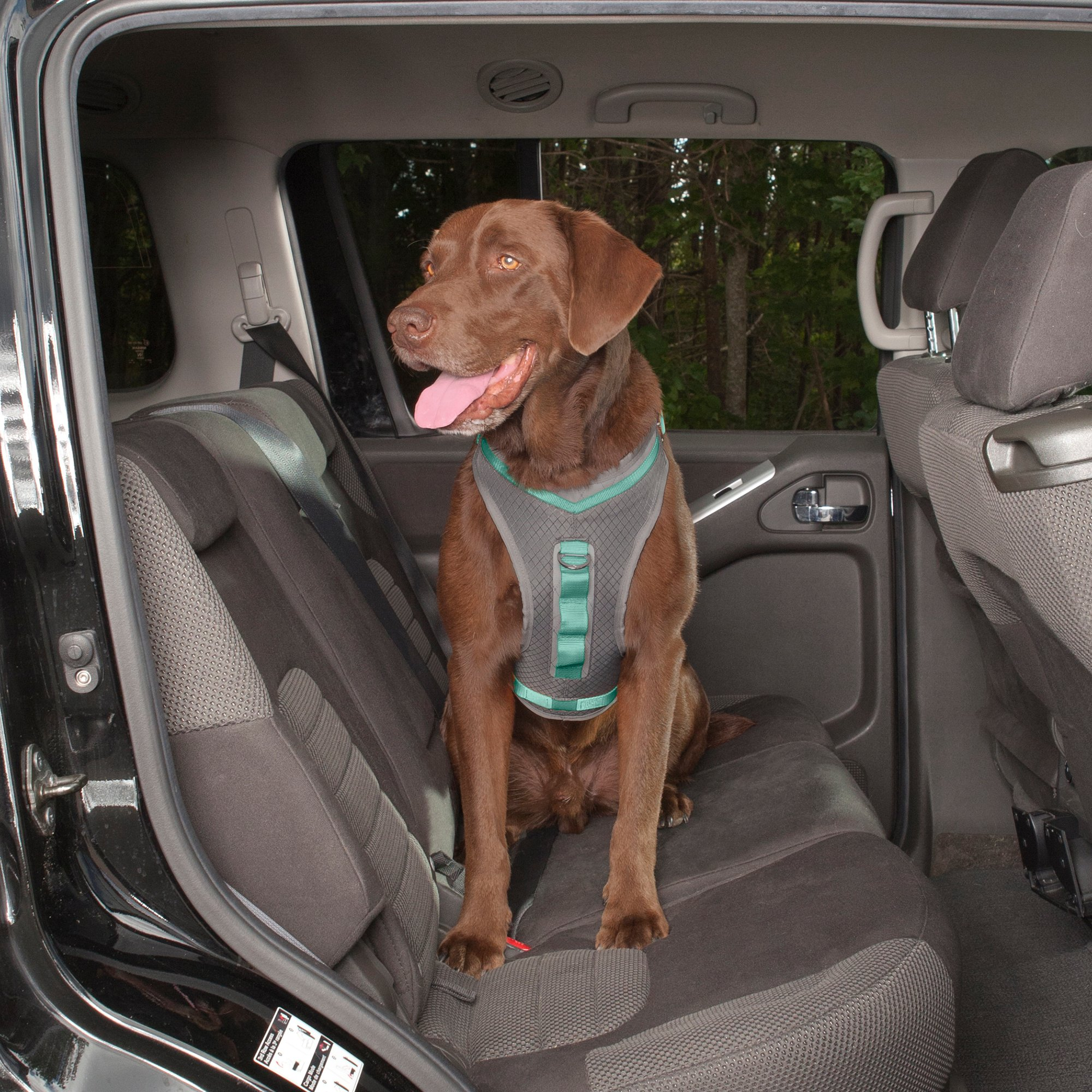 Kurgo Gray & Turquoise Journey Dog Harness