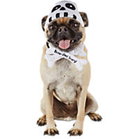Halloween Bootique Spooky Skull Dog Headpiece