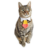Halloween Bootique Corny Cat Bowtie Costume