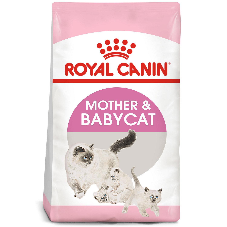 ROYAL CANIN FELINE HEALTH NUTRITION Mother & Babycat Dry Cat