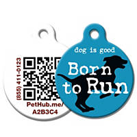 PetHub Recycled Steel Pet ID Tag, Blue Born to Run
