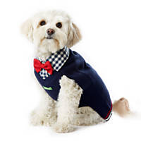 Wag-A-Tude Navy Gingham Collar with Bowtie Sweater