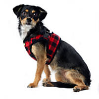 Wag-a-tude Red and Black Buffalo Checkered Corduroy Harness