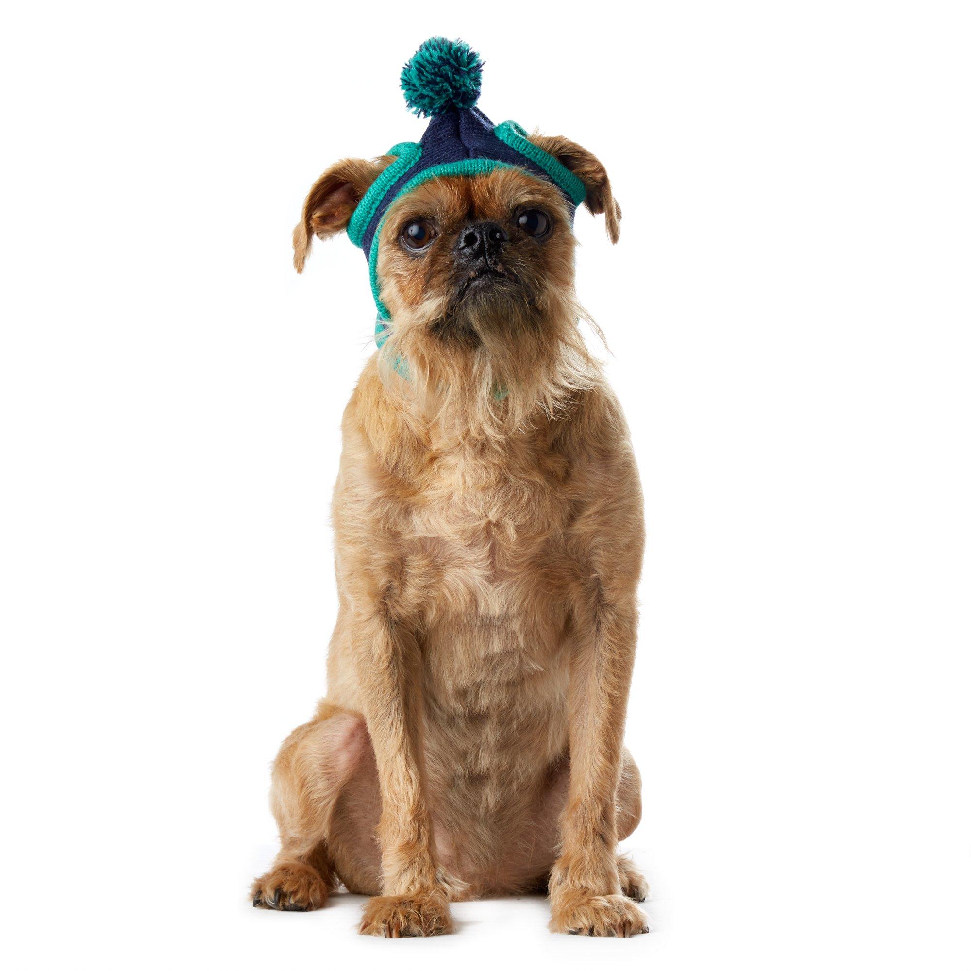 Pup Crew Navy Pom Pom Stocking Hat