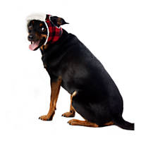 Wag-a-tude Red Buffalo Checkered Trapper Hat