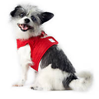Pup Crew Red Puffy Quilted Harness