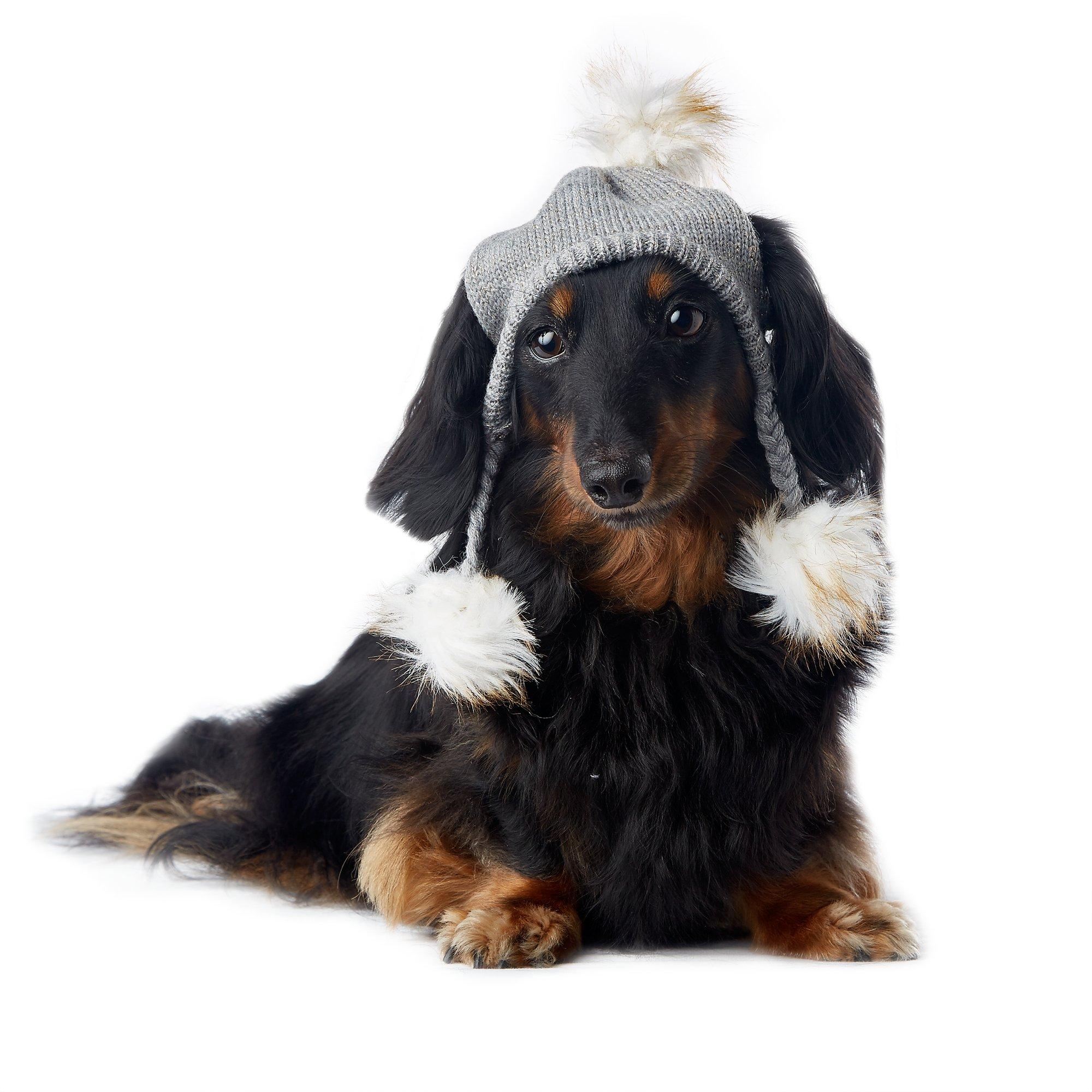 Smoochie Pooch Gray Sparkle Furry Knit Hat