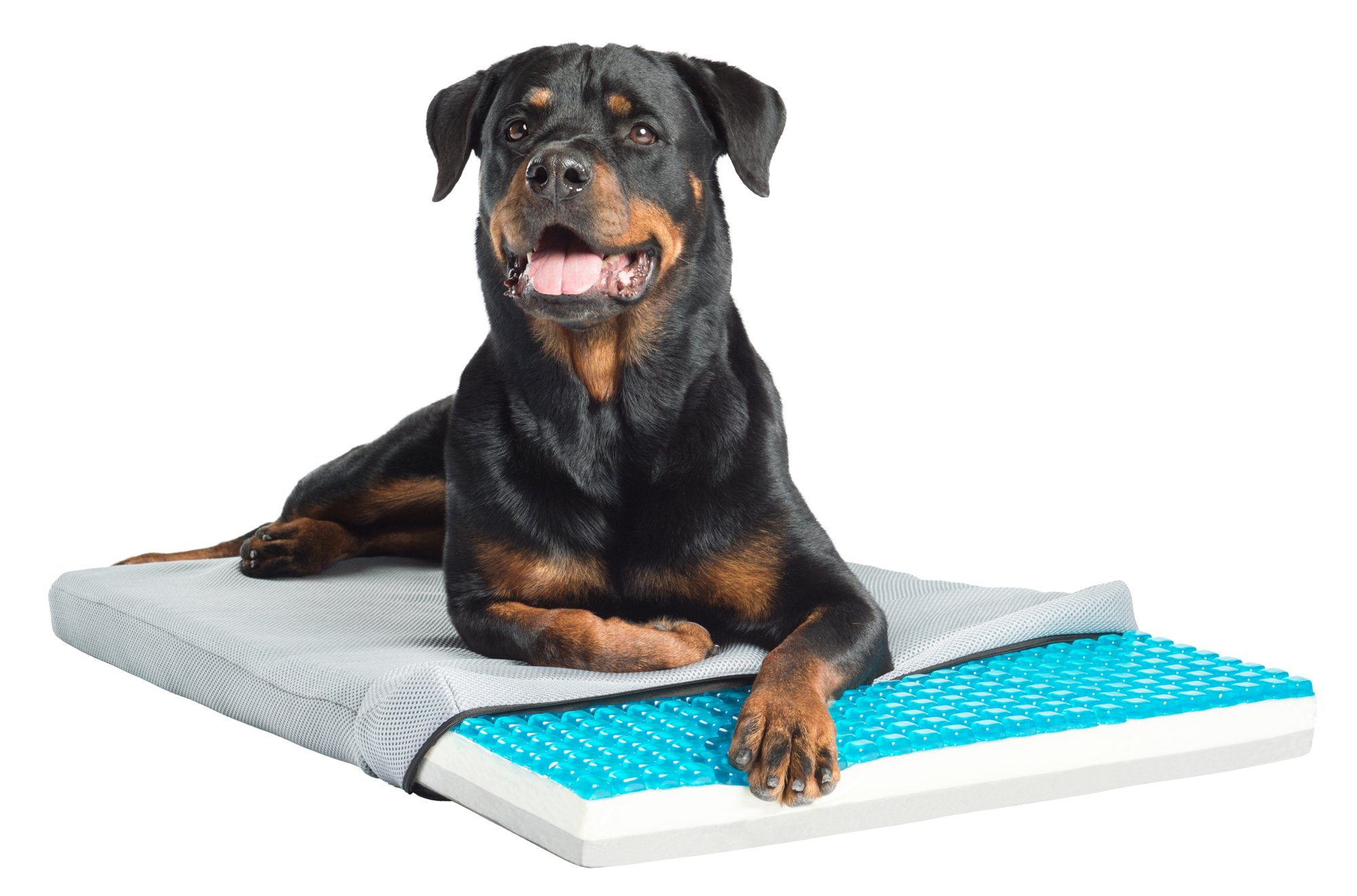 Pet Therapeutics TheraCool Gel Cell Cooling Pad with Tricore Charcoal-Infused Memory Foam Pet Bed