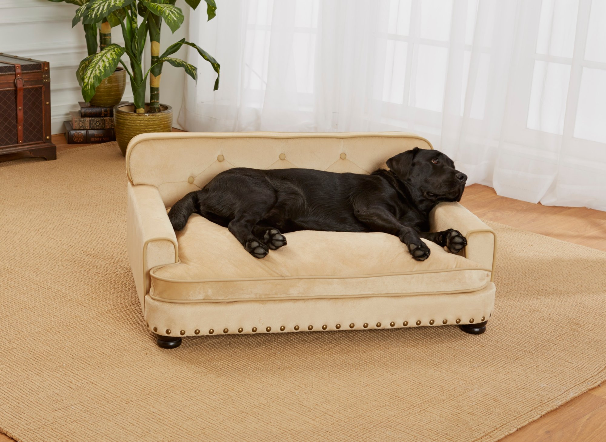 Enchanted Home Pet Caramel Ultra Plush Library Pet Sofa