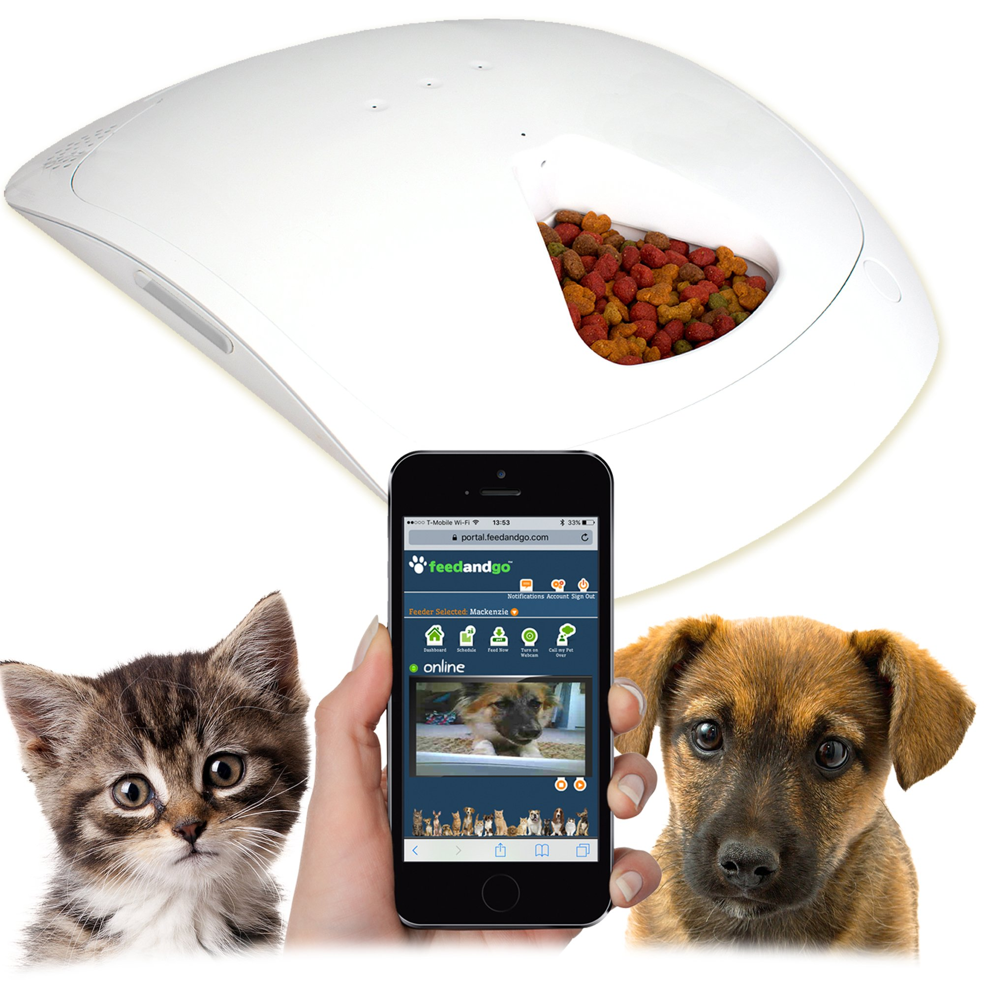 Feed and Go Pet Feeder