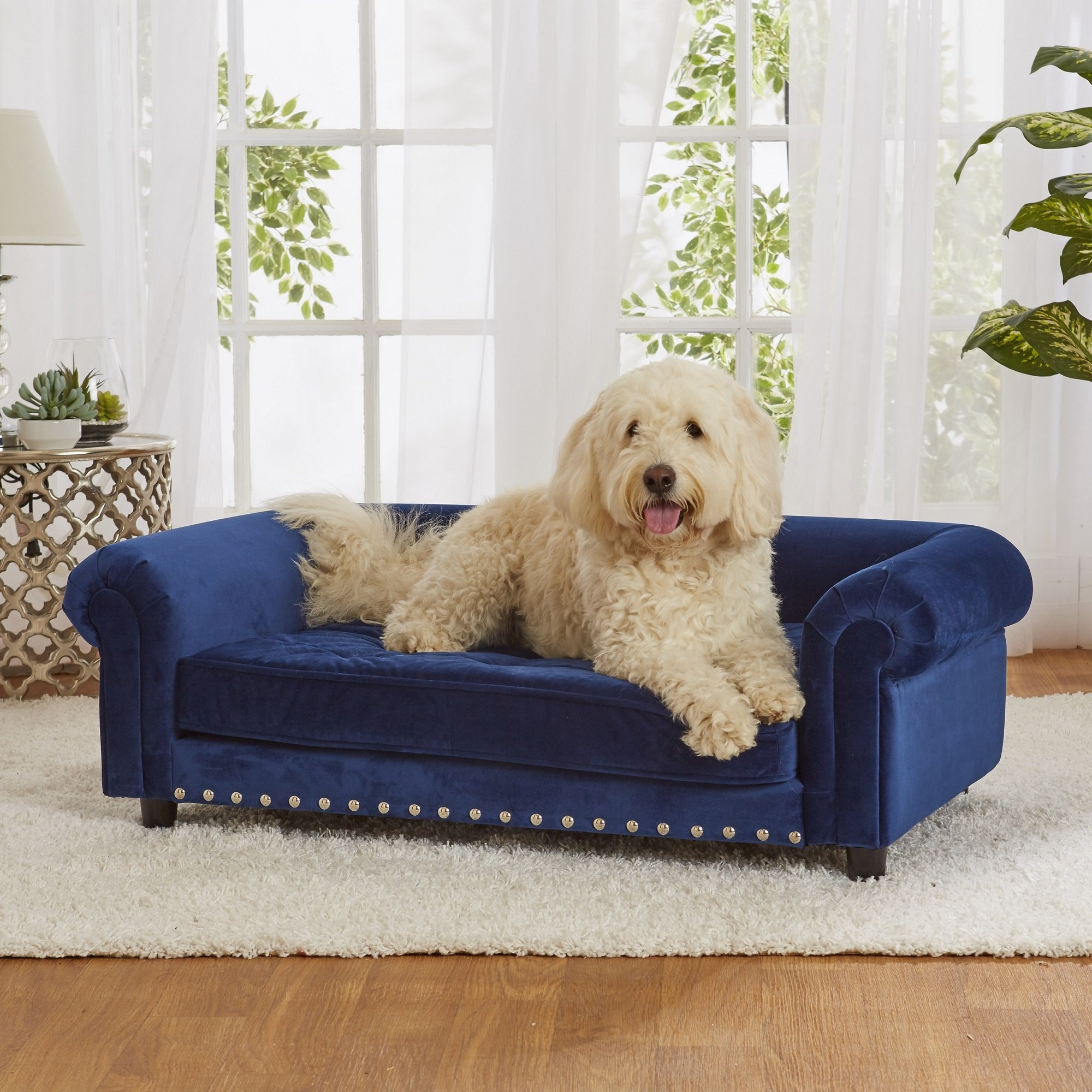 Enchanted Home Pet Blue Velvet Manchester Pet Sofa