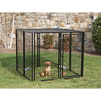 Dog Crates Kennels Carriers Gates Car Seats Petco Com