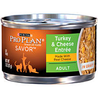 Pro Plan Savor Turkey & Cheddar Cheese Adult Canned Cat Food in Gravy