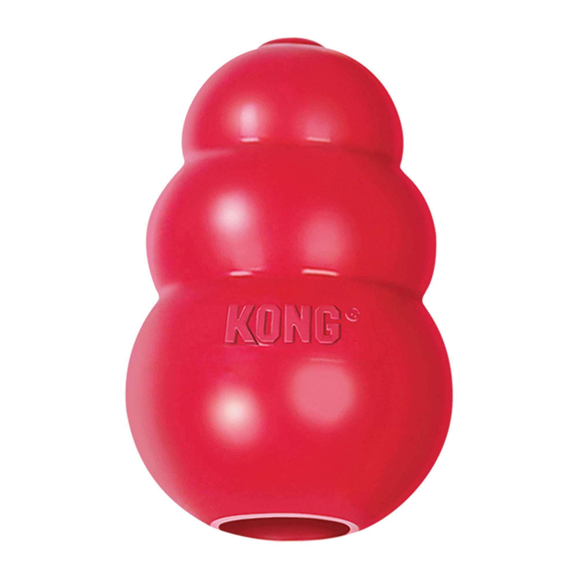 Of Kong Dog Toys